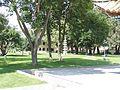 TSSccc - panoramio.jpg