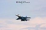 Tambov Airshow 2008 (65-17).jpg