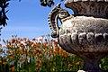 Tarde de junio en los jardines de Aranjuez (14396459561).jpg