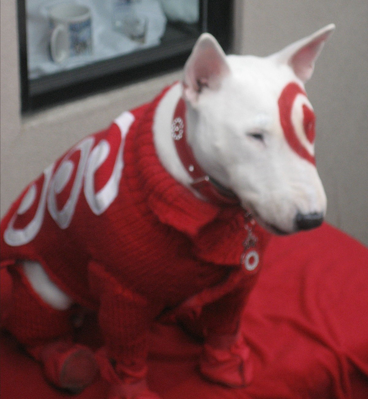 Bullseye mascot wikipedia What kind of dog is the target mascot