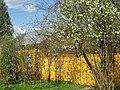 Tarusa yellow house.jpg