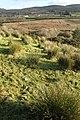Tawnaghlaghan Townland - geograph.org.uk - 1048247.jpg