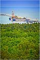 Terminal LNG w Świnoujściu - zdjęcie 6.jpg