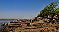 The Nile at Malakal - panoramio.jpg