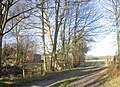 The Road to Hucknall Farm - geograph.org.uk - 328570.jpg