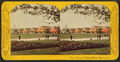 The national soldier's home, Dayton, O, from Robert N. Dennis collection of stereoscopic views 3.png