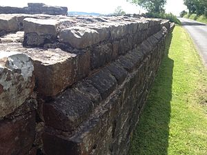 Turret (Hadrian's Wall) - Photograph showing the plinth course on the outer north wall of Turret 52A.