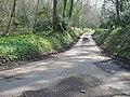 The road to Bladbean and Kingston - geograph.org.uk - 387355.jpg