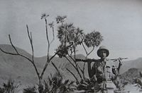 Thesiger 1934.jpg