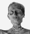 Thutmosis IV mummy head.png