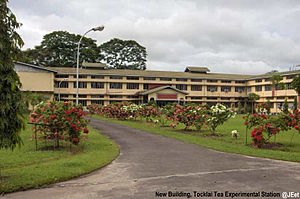 Jorhat - Tocklai Tea Research Institute