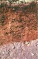 Tokul Soil.png