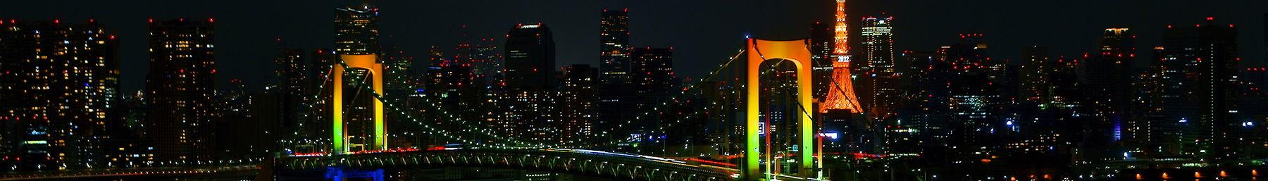 Tokyo night banner.JPG