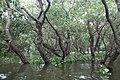 Tonle Sap Lake (9731693350).jpg