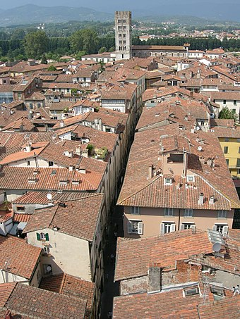 Via Fillungo view from the Clock Tower Torre dell'orologio, view 11 via fillungo, san frediano.JPG