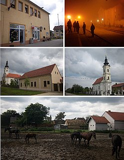 Tovarnik Municipality in Syrmia, Croatia