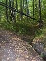 Trehstolbovoy (Tantey lismaprya) spring 04.jpg