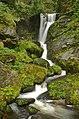 Triberger Wasserfall im Naturpark Schwarzwald Mitte-Nord, Baden Württemberg, Deutschland.jpg