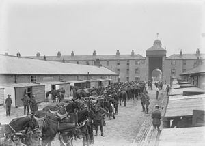Newbridge, County Kildare - Stables at Newbridge Barracks, c.1910