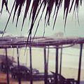 Tropical rain (6863964679).jpg