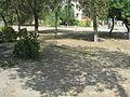 Tsentralnyy rayon, Volgograd, Volgogradskaya oblast', Russia - panoramio (153).jpg