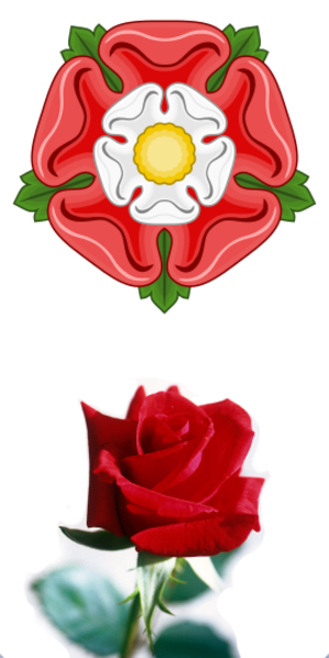 English rose (epithet) - Tudor and red roses