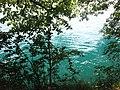 Turquoise (7566210042).jpg
