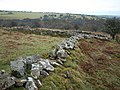 Twisting wall below Tregarrick Tor - geograph.org.uk - 707544.jpg