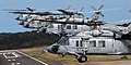 US Navy 070724-N-8907D-451 Five MH-60S Seahawks, from the.jpg