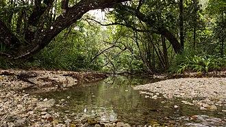 Ujung Kulon National Park - Image: Ujung Kulon National Park, 2014