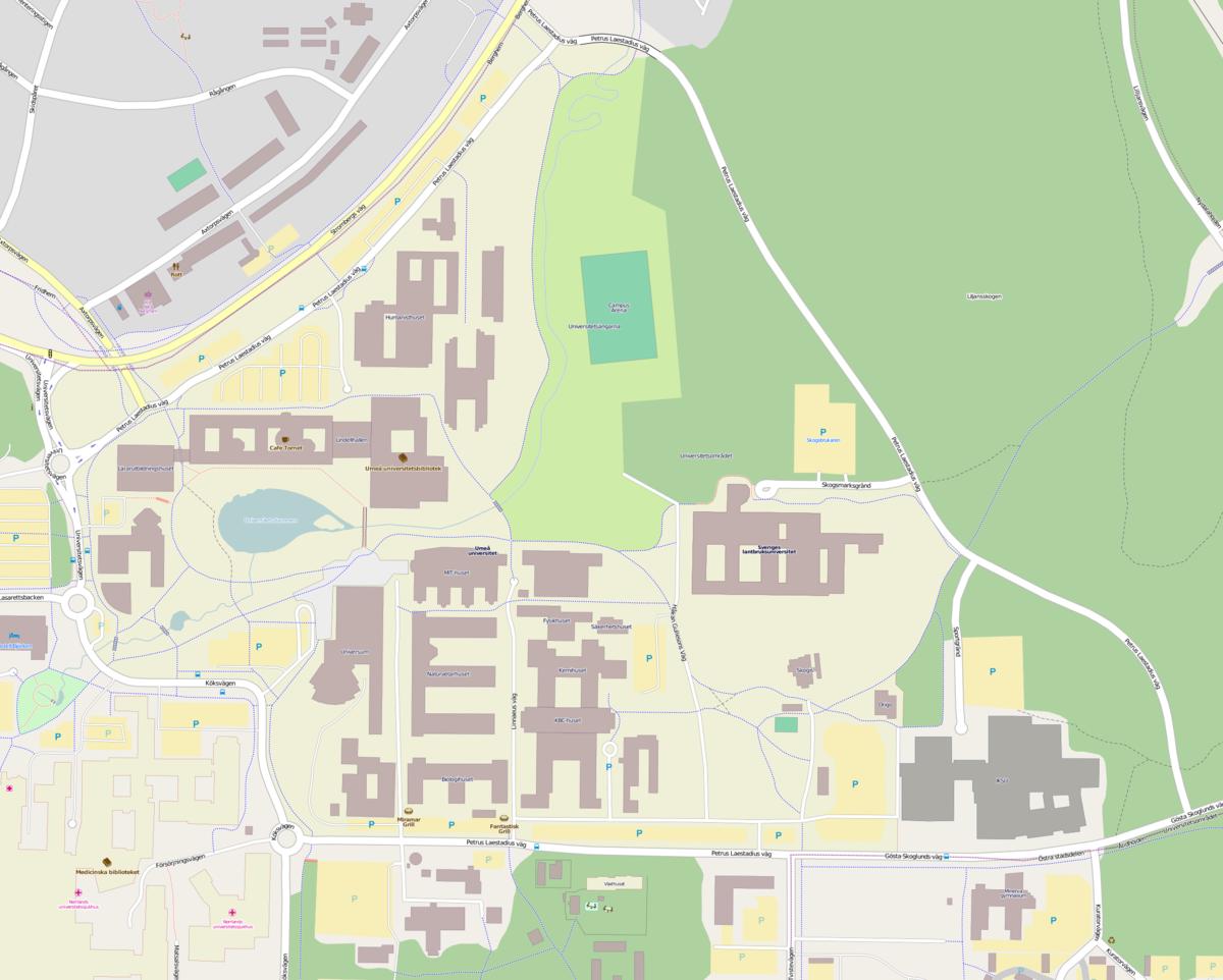 Umeå University Wikipedia - Sweden map universities