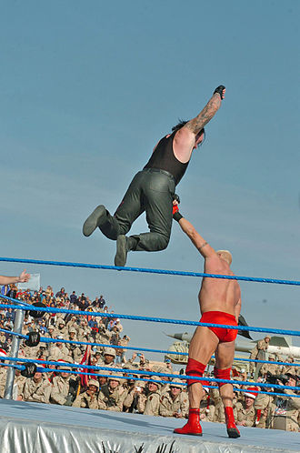 Professional wrestling aerial techniques - The Undertaker jumping down from the top rope to strike Heidenreich with Old School.