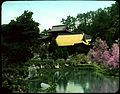 Unidentified building with some yellow roofs with pond and trees (including flowering plum trees) (19942253822).jpg