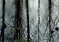 Vårflod på Gotland.jpg