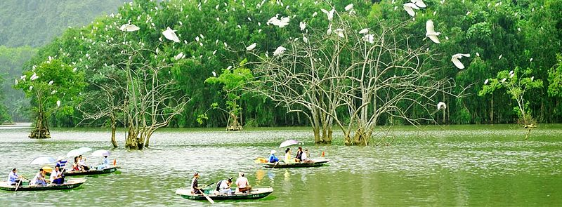 Thung Nham Bird Sanctuary in Ninh Bình Province of northern Vietnam housing more than 40 species of birds and more than 100 flora species, an example of ongoing conservation efforts towards habitat life in the country.[178]