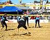 VEBT Margate Masters 2014 IMG 5084 3110x2074 (14985675591).jpg