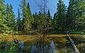 Valdai National Park asv2018-08 img05 Roschino.jpg