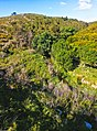 Vale da ribeira dos Marmeleiros, Murches. 05-18 (02).jpg