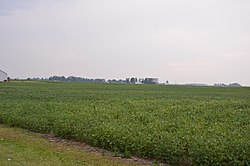 Fields on Van Tassel Road north of Weston