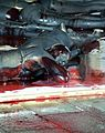 Vanessa Beecroft, VB 61. Still Death! Darfur Still Deaf? Pescheria di Rialto, Venice (542131225).jpg