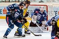 Vienna Capitals vs Fehervar AV19 -200-9.jpg