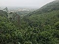 View from the Likpe mountain.jpg