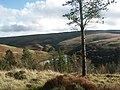 Viewpoint near Carreg Clochdy overlooking Llyn Brianne reservoir - geograph.org.uk - 611.jpg