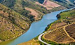 A river with terraced vineyards