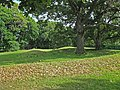 Vilas Park Mound Group.jpg