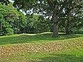 Vilas Park Mound Group.jpg