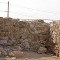 Visit Tel Arad 06.jpg