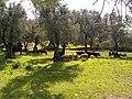 Volubilis, Morocco (5416199880).jpg