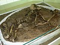 Vratsa-history-museum-Early-neolithic-funeral-from-village-Ohoden.jpg