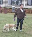 Vrouw hond en frisbee in hand vliegerfestival Spijkenisse.jpg